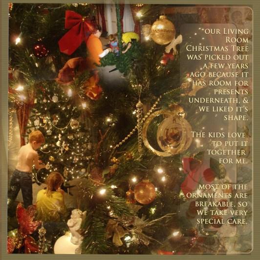 christmas-trees-2006-c.jpg