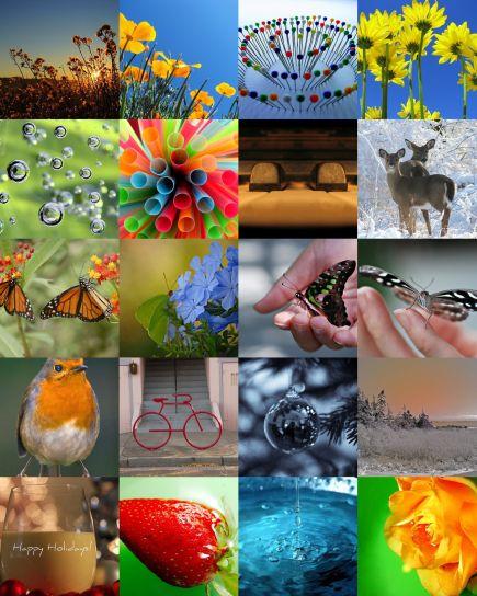 mosaic589448-12_07.jpg