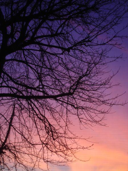 jan-08-sunrise-3.jpg