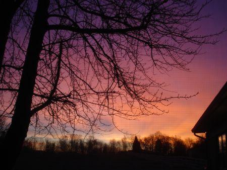 jan-08-sunrise.jpg