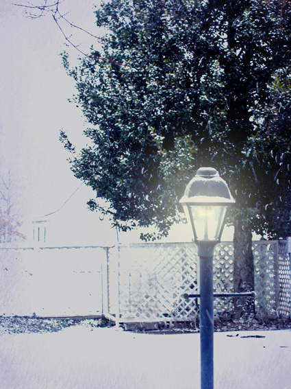 snow-pole-in-blue-light.jpg