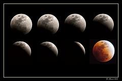 lunar-eclipse-stages.jpg